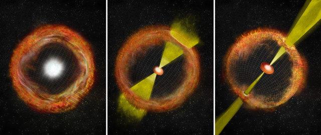 A sinistra, una supernova comune senza motore centrale, a sinistra una supernova con un potente motore centrale che genera un lampo gamma e al centro un caso intermedio come SN 2012ap (Immagine Bill Saxton, NRAO/AUI/NSF)