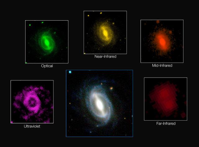 L'aspetto di una galassia a varie lunghezze d'onda nell'indagine GAMA (Immagine ICRAR/GAMA