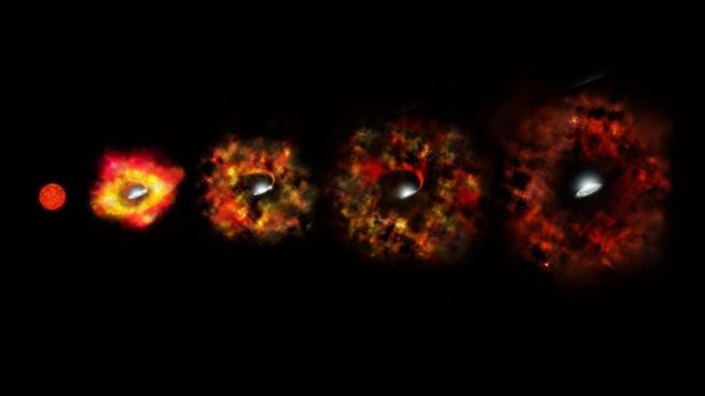 Le possibili fasi del collasso di una stella direttamente in un buco nero (Immagine NASA/ESA/P. Jeffries (STScI))