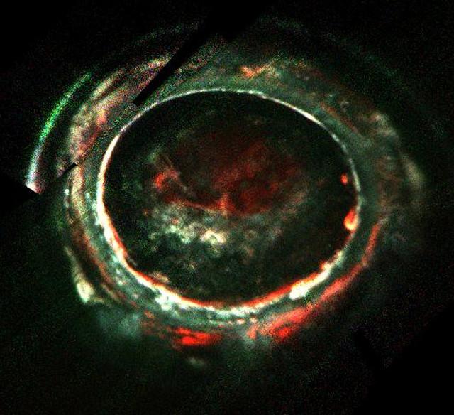 Aurora meridionale di Giove (Immagine NASA/JPL-Caltech/SwRI)