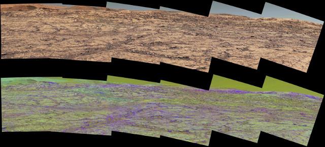Panorama della Vera Rubin Ridge (Immagine NASA/JPL-Caltech/MSSS/ASU)