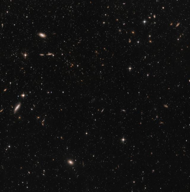 Una piccola parte della Galassia Nana dello Scultore (Immagine ESA/Hubble & NASA)
