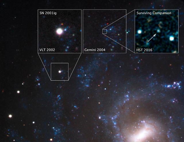 La supernova SN 2001ig