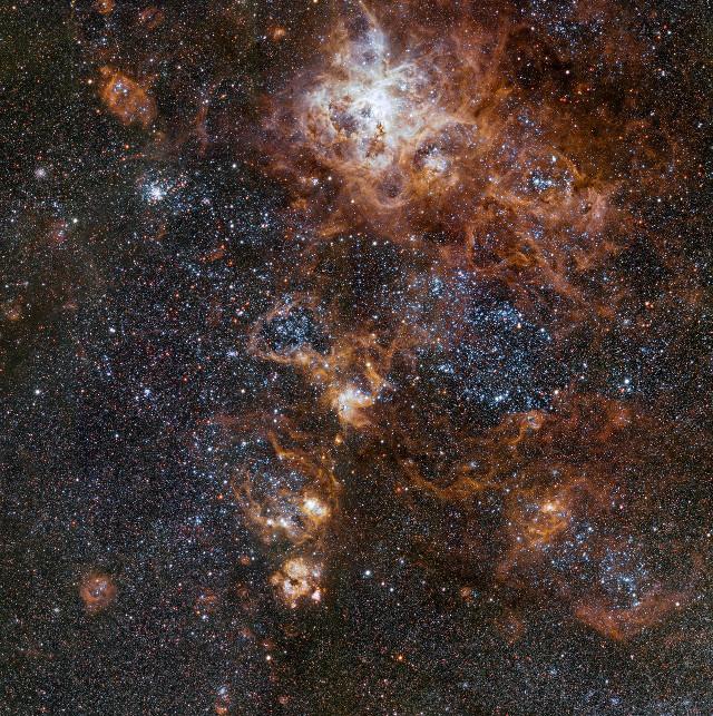 Il vicinato della Nebulosa Tarantola (Immagine ESO)