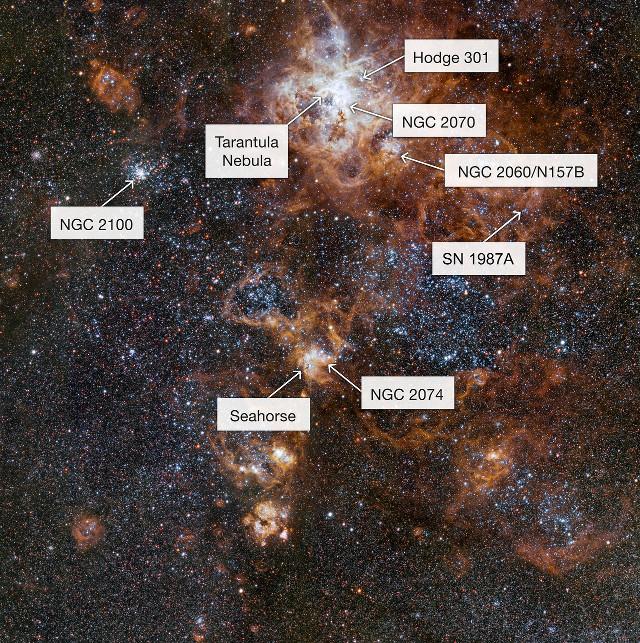 Il vicinato della Nebulosa Tarantola con note (Immagine ESO)