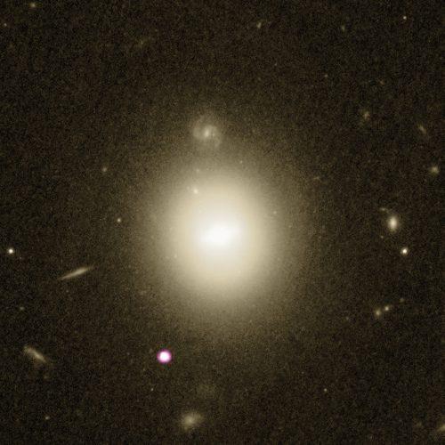 La galassia 6dFGS gJ215022.2-055059 e il candidato buco nero di massa intermedia
