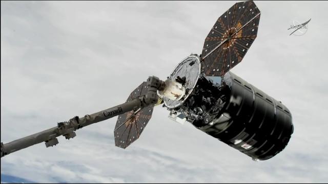 Il cargo spaziale Cygnus John Young catturato dal braccio robotico Canadarm2 (Immagine NASA TV)