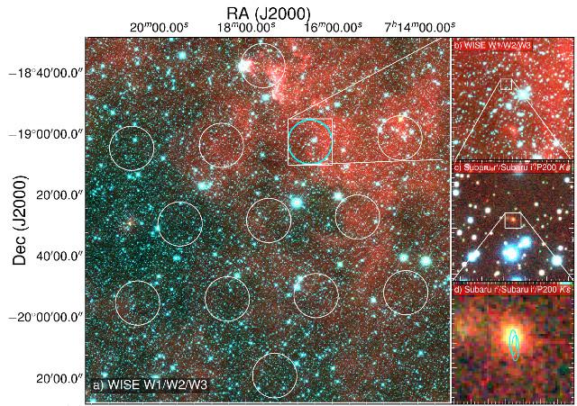 Nuovi indizi sull'origine dei lampi radio veloci in stelle di neutroni