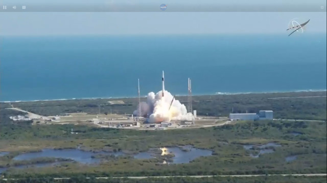 Il cargo spaziale Dragon al decollo su un razzo Falcon 9 (Immagine NASA)
