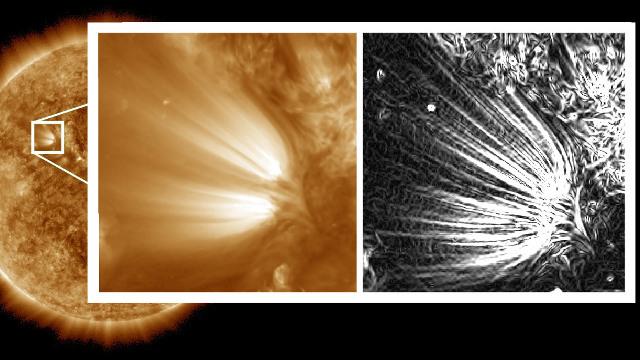 Piume solari (Immagine NASA/SDO/Uritsky, et al)