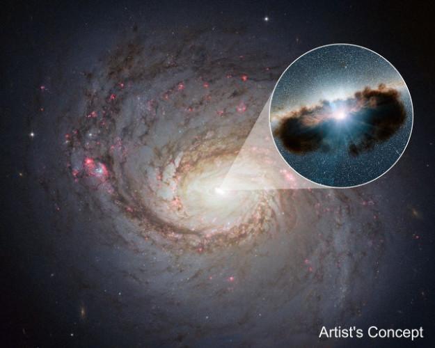 La galassia NGC 1068 vista dal telescopio spaziale Hubble e nel cerchio la rappresentazione artistica del buco nero supermassiccio circondato da una spessa ciambella di gas e polvere (Immagine NASA/JPL-Caltech)