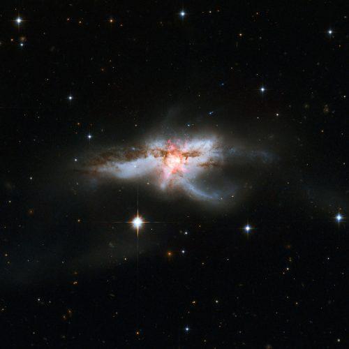 La galassia NGC 6240 (Immagine NASA, ESA, the Hubble Heritage (STScI/AURA)-ESA/Hubble Collaboration, and A. Evans (University of Virginia, Charlottesville/NRAO/Stony Brook University))
