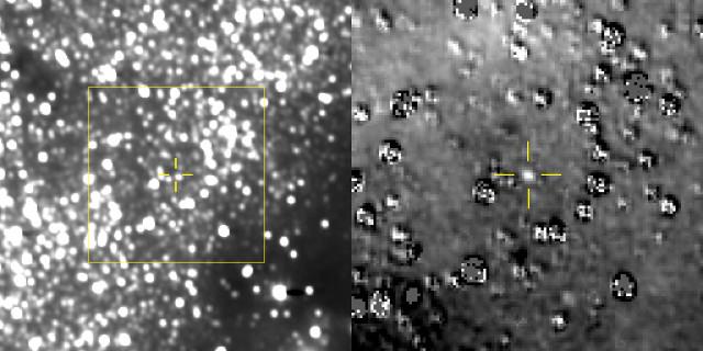 La sonda spaziale New Horizons ha fotografato il suo prossimo obiettivo Ultima Thule