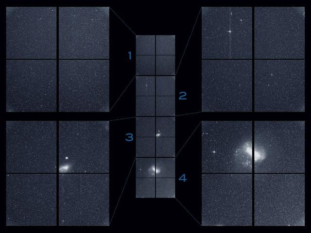 Le immagini catturate da TESS (NASA/MIT/TESS)