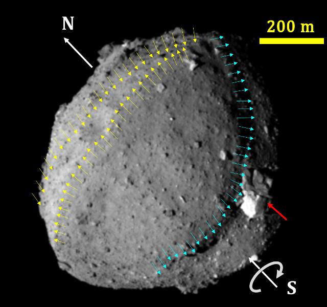 L'asteroide Ryugu (Immagine cortesia Seiji Sugita et al., Science)