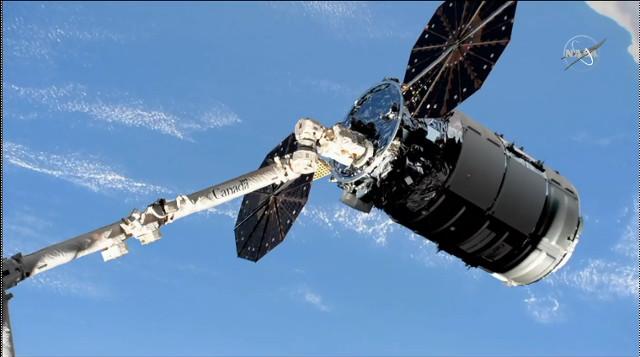 Il cargo spaziale Cygnus Alan Bean catturato dal braccio robotico Canadarm2 (Immagine NASA TV)