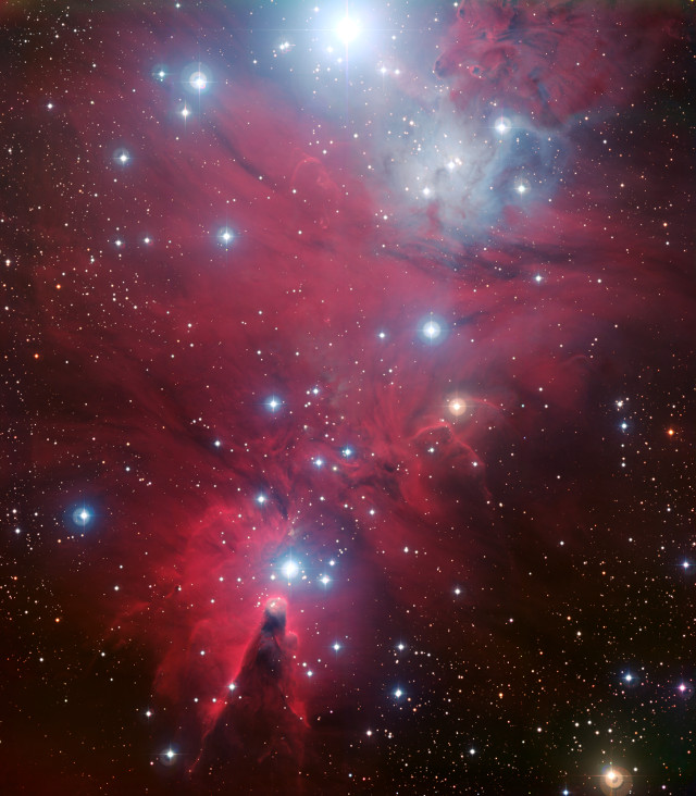 NGC 2264 visto da WFI (Immagine ESO)